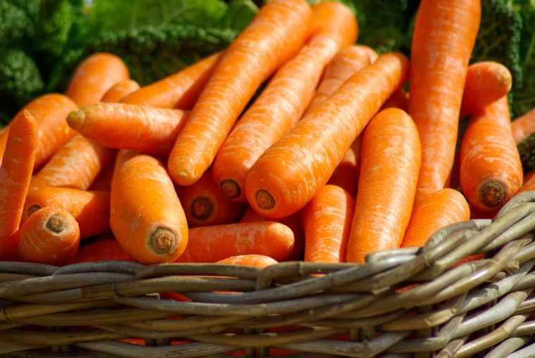 vegetables market basket carrots